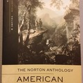 Bücher / Literatur: Norton Anthology American Literature B